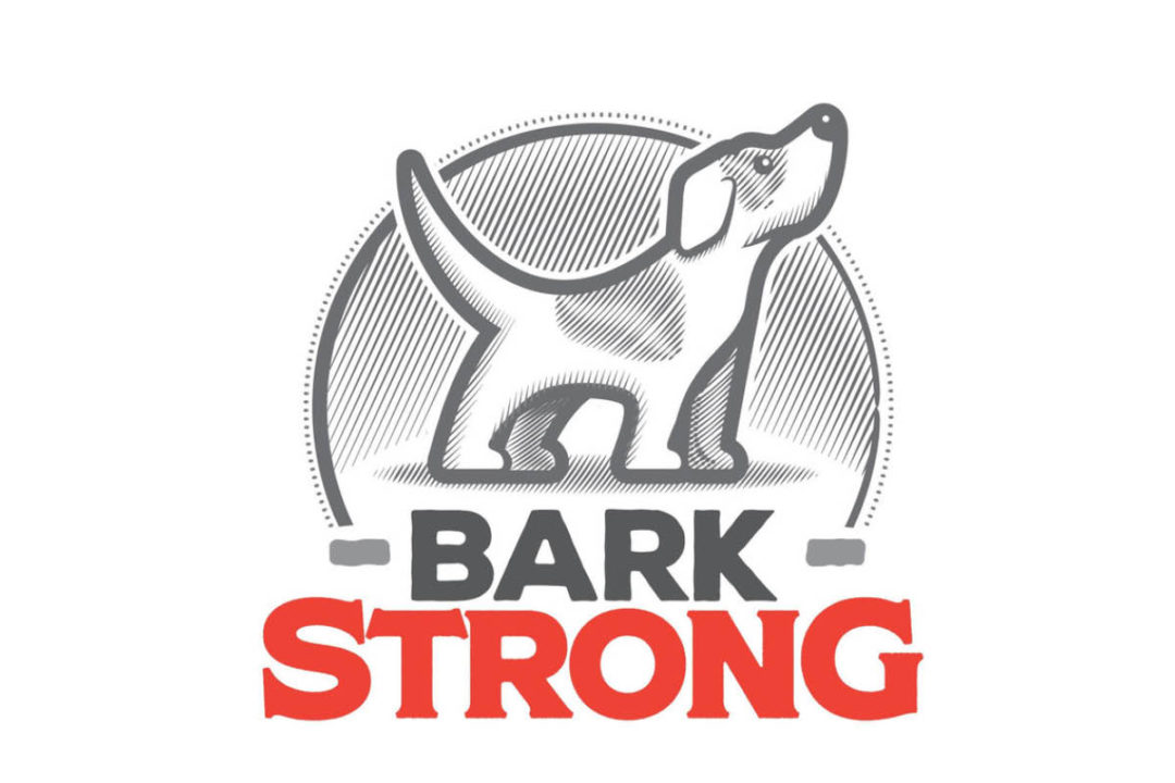 Barkstrong logo