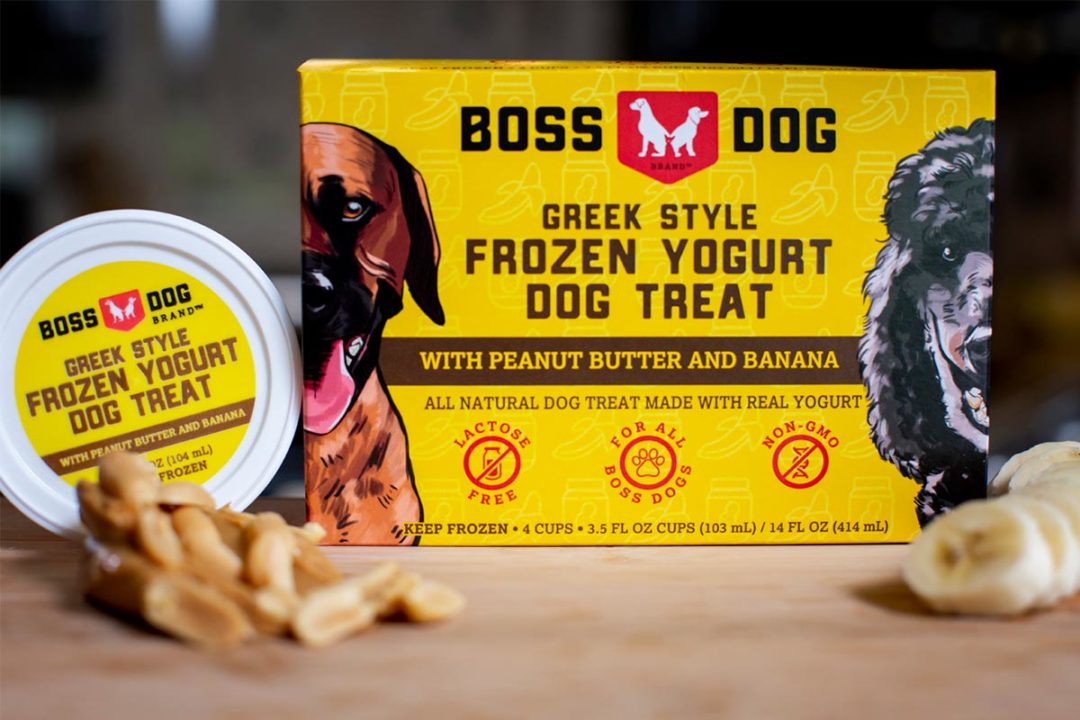 Boss Dog Brand frozen Greek yogurt dog treats, peanut butter and banana flavor