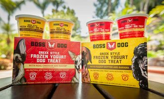 Boss-dog-canada-web