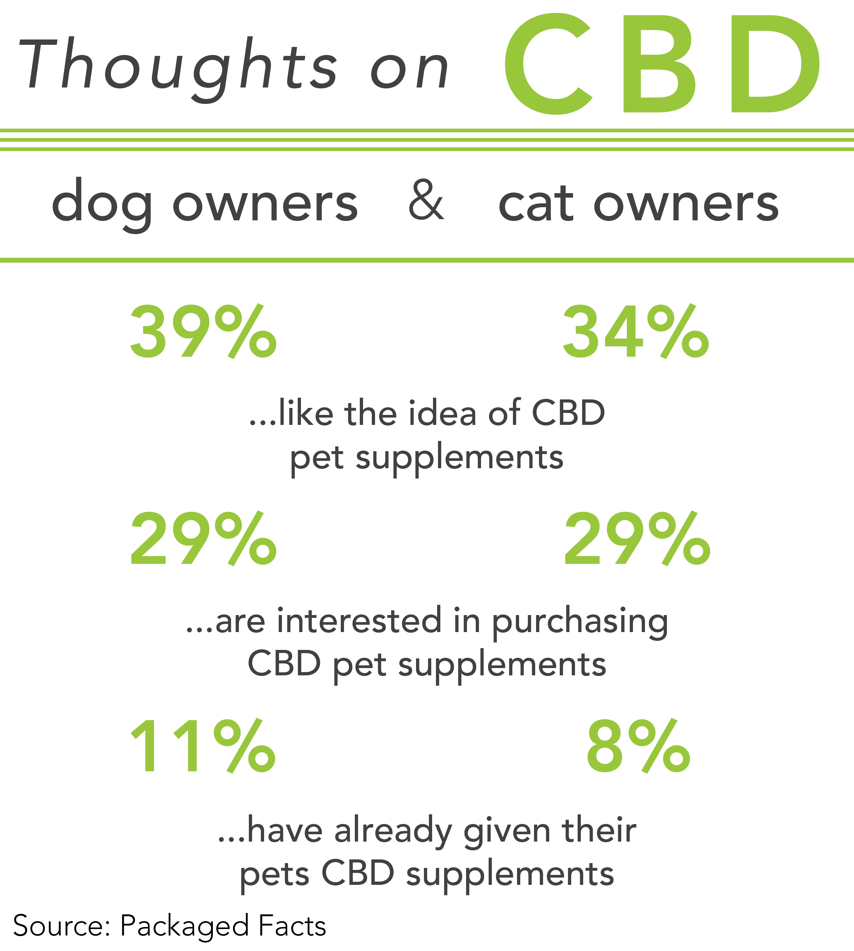 Consumers curious about CBD for pets