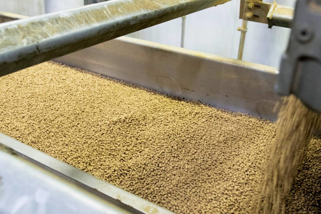 Kibble production, C.J. Foods