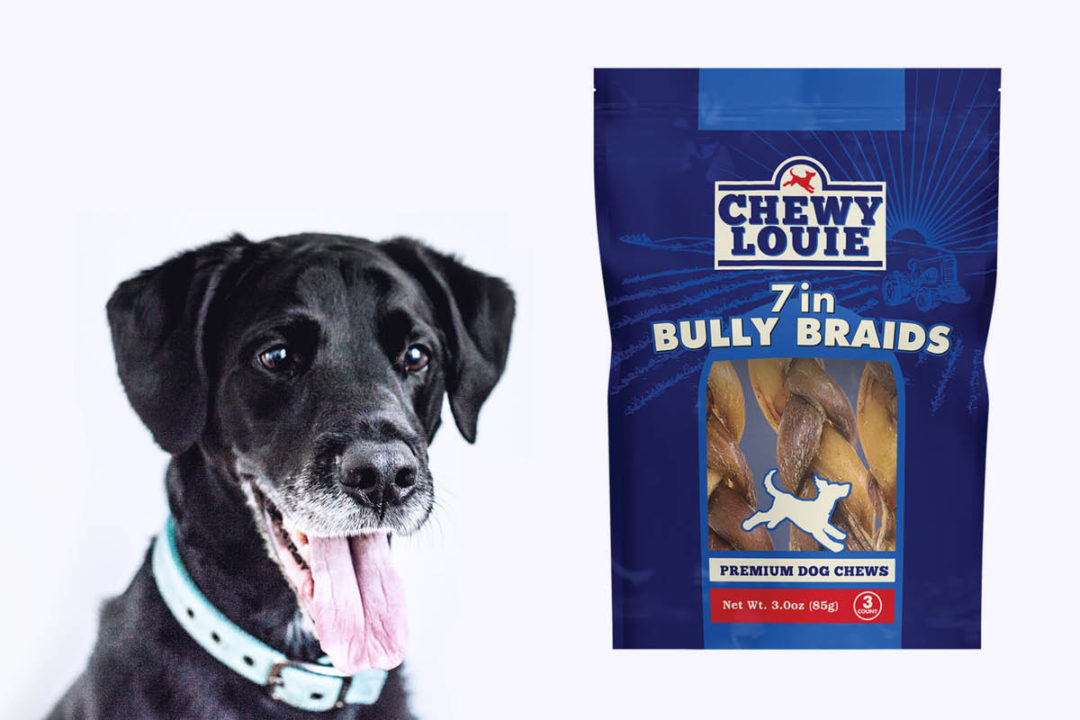 Dog panting while looking at bag of Chewy Louie bully braids