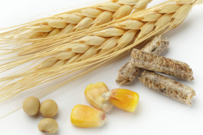 Agricultural products: corn, wheat, feed and soybeans (©STOCKR - STOCK.ADOBE.COM)
