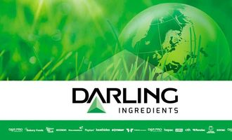 Darling-graphic