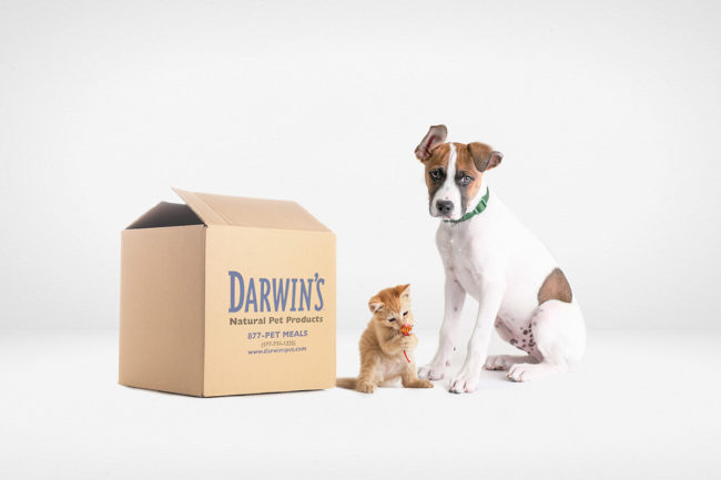 Box of Darwin's Natural Pet Products next to a cat and dog