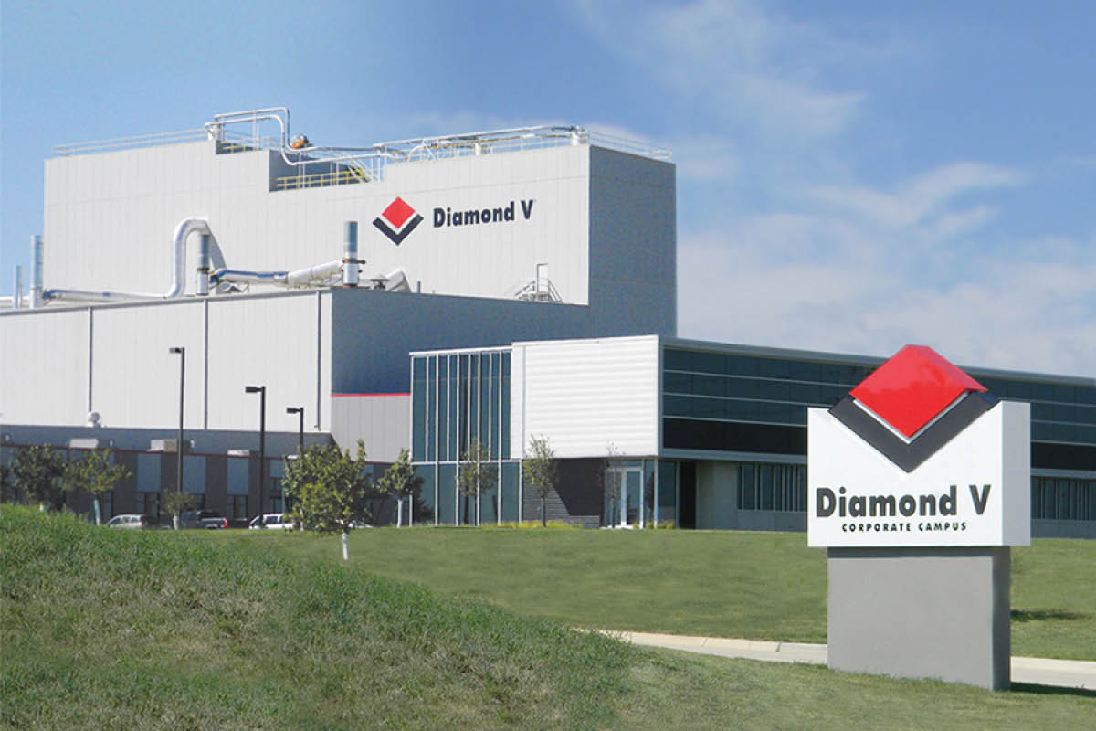 Diamond V headquarters