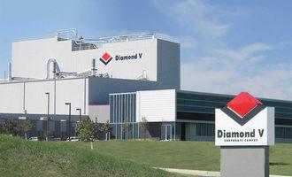 Diamond-v-headquarters