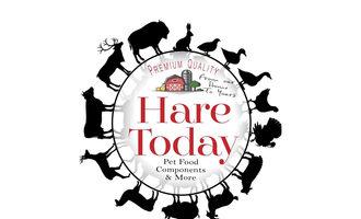 Hare-today-contamination-web