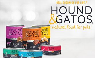 Hound-gatos-web