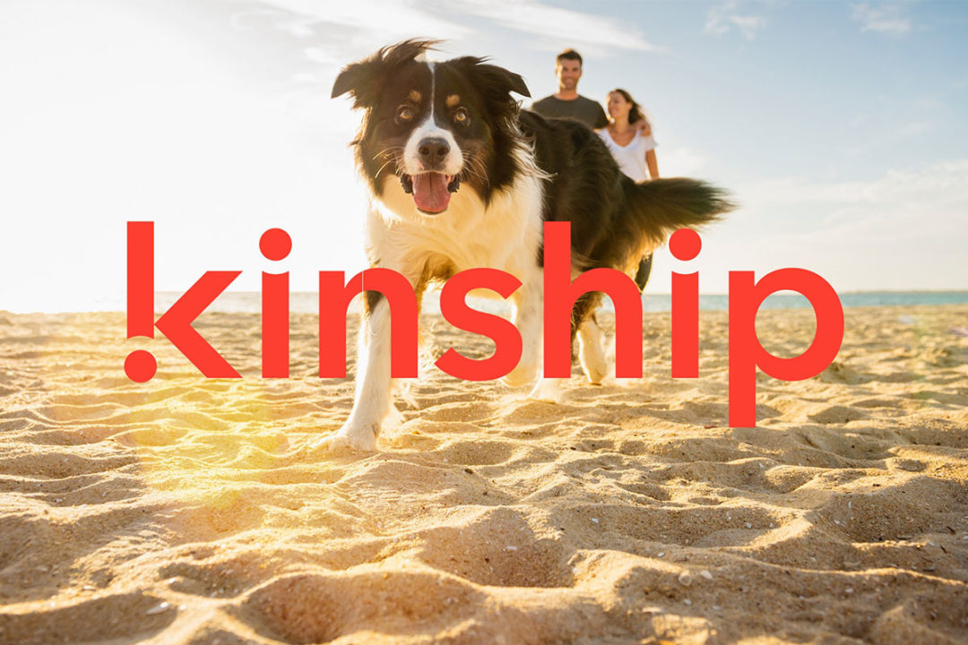 Mars Petcare's newest business division, Kinship