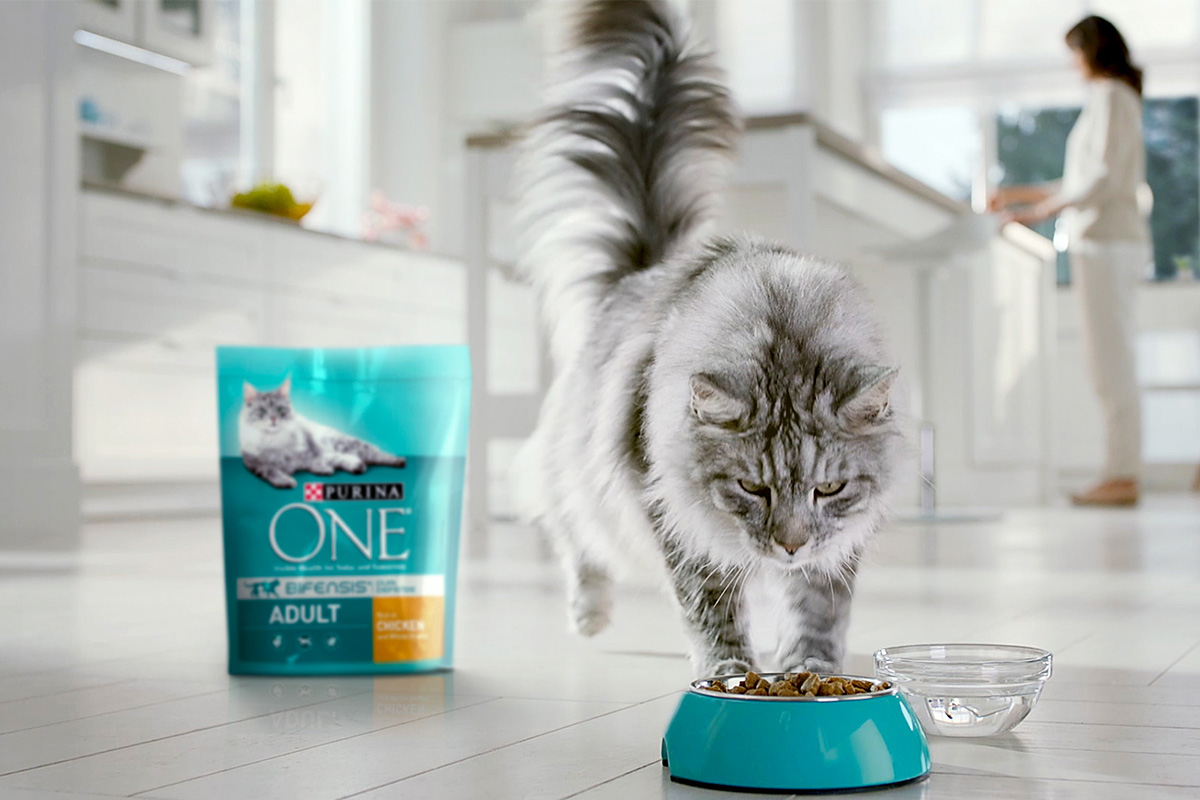 Purina Drives Q1 Sales For Nestle In North Latin America 2019 04 19 Pet Food Processing