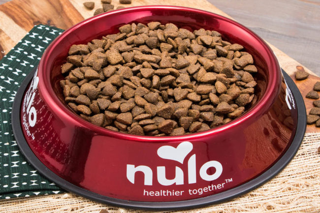 Dog food in red Nulo bowl