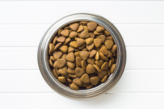 Bowl of kibble pet food on white background (©STOCKR - STOCK.ADOBE.COM)