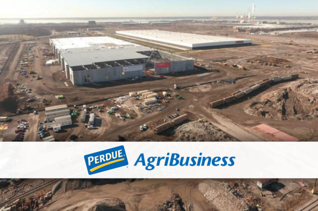 Perdue Agribusiness' new organic grain facility, Port of Baltimore, Maryland