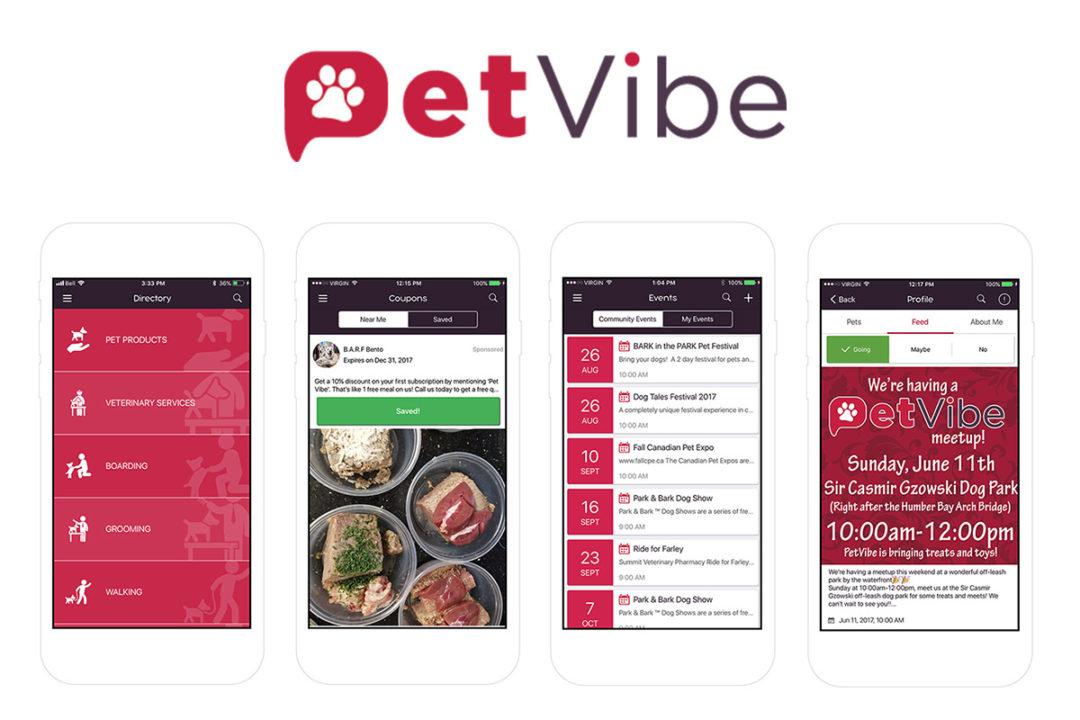 PetVibe logo and slogan with pets