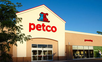 Petco-artificial-ing-web