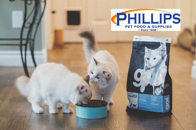 Cats enjoying Petcurean GO LID food and Phillips logo