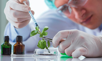 Plantbiotech_lead
