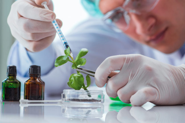 Adobe Stock image of biotechnology science (Source: ©STOCKR - STOCK.ADOBE.COM)