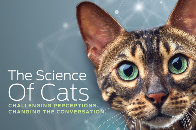 Purina Institute CAN Summit 2019 brochure cover