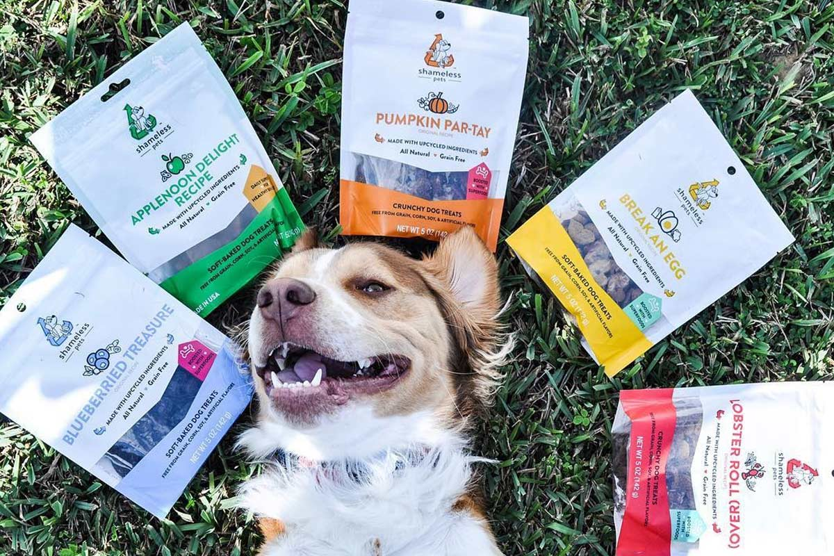 Shameless Pets dog treat products and happy dog