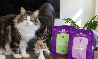 Stellas selects cat lead