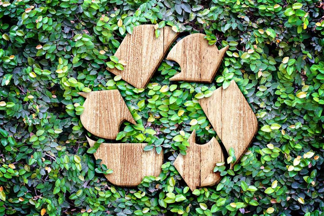 Wooden recycling symbol on green leaves (©STOCKR - STOCK.ADOBE.COM)