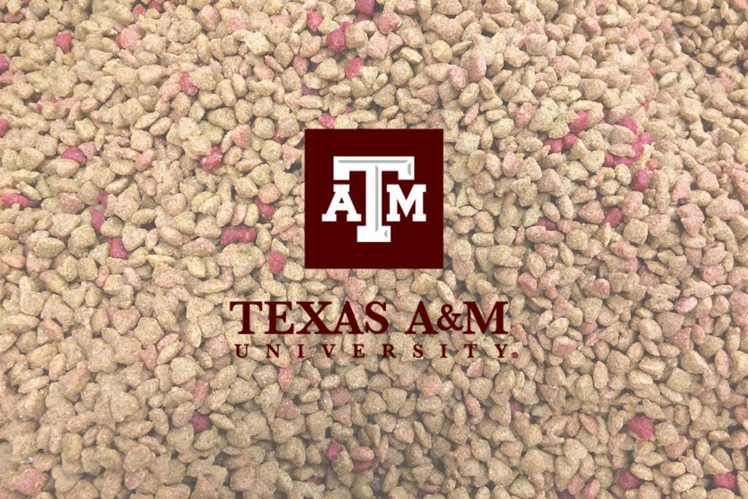 Extruded pet food with Texas A&M University logo