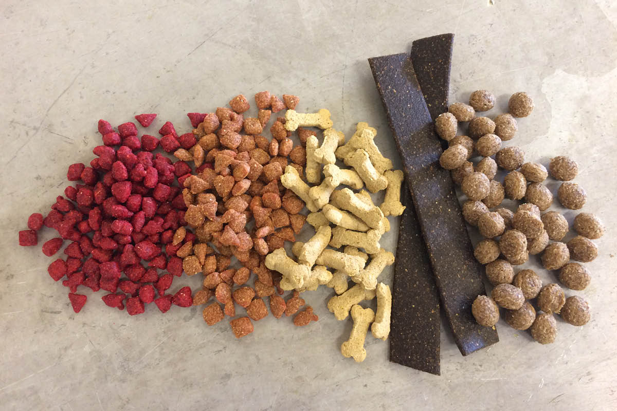 TAMU Feed and Pet Food Extrusion Course
