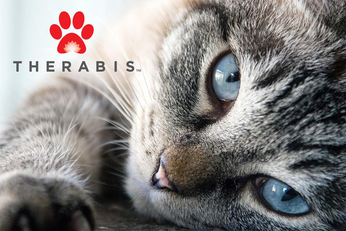 Close-up of cat and Therabis logo