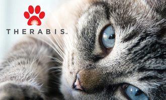 Therabis-cat-web