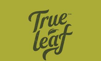 True-leaf-logo_lead