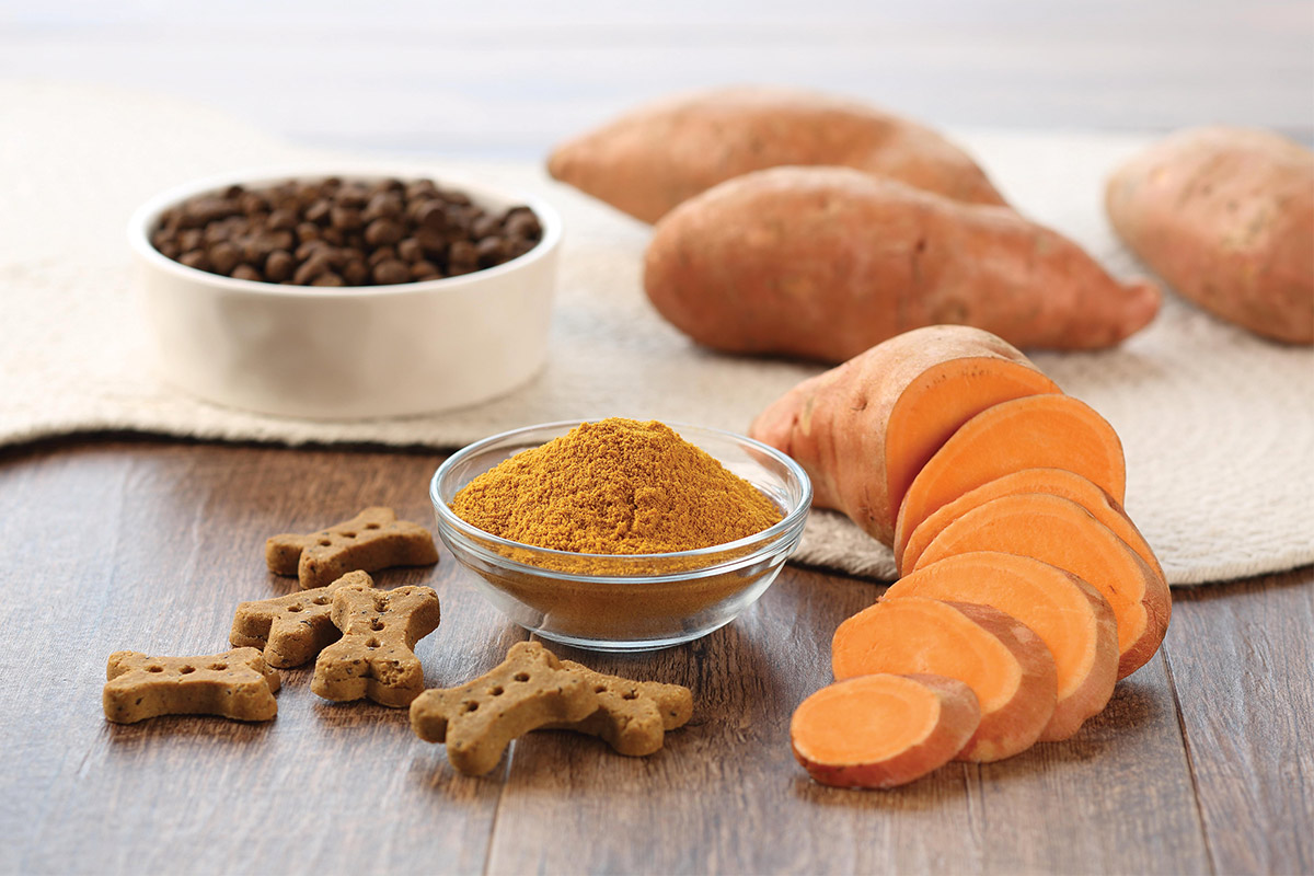 Van Drunen Farms sweet potato powder for dog treats