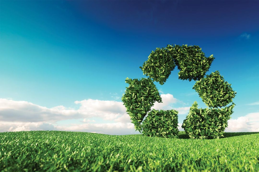 Large green recycling sign formed from leaves sitting on open grass field (©STOCKR - STOCK.ADOBE.COM)