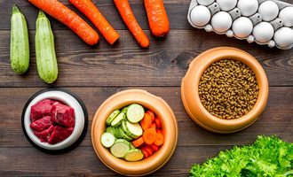 Whole-foods-pet-food_lead