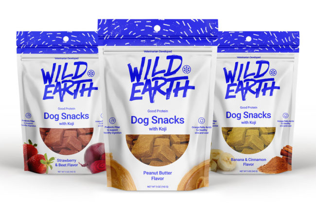 Wild Earth koji dog treat products: strawberry and beet; peanut butter; banana and cinnamon