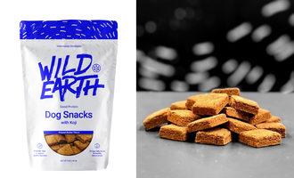 Wild-earth-koji-treat-graphic
