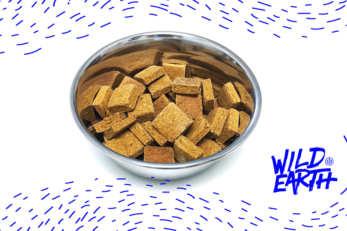 Wild Earth koji treats in bowl with logo