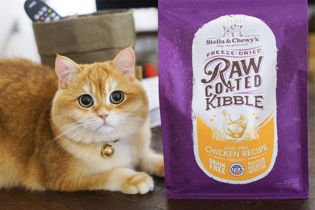 Stella & Chewy's raw-coated cat kibble
